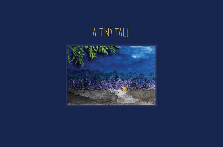 A Tiny Tale Front Cover